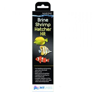 NT Labs Brine Shrimp Hatcher Kit ( Kit Completo para Criar Artemia Salina)